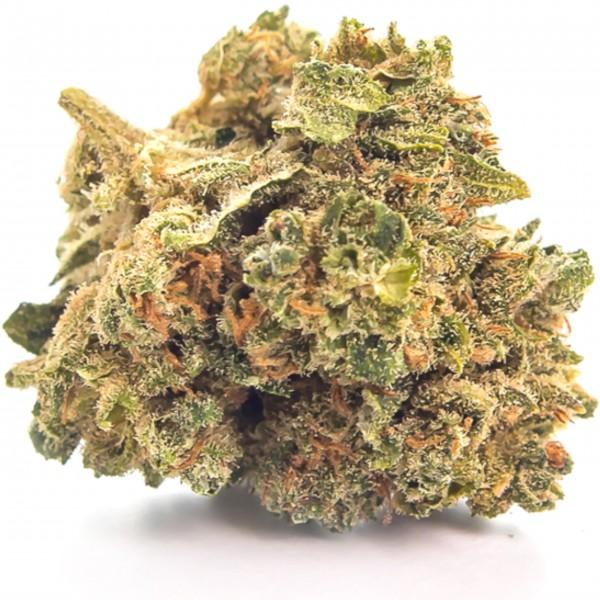 Susz Konopny Lemon Haze 1g CBD 4%